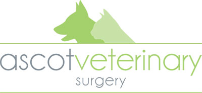 Ascot Veterinary Surgery